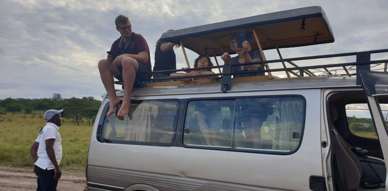 2019-reis-safari